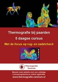 cursus thermografie bij paarden, rug- en zadelcheck